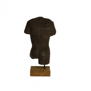 HSM Collection New Torso body man - naturel kleur - caementum