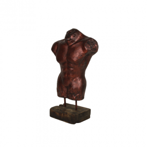 Torso man - koperkleurig - HSM Collection
