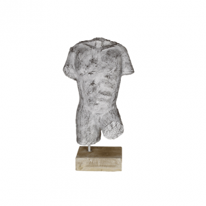 Torso man - witgewassen- HSM Collection