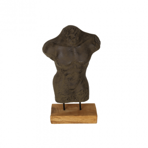 torso man - naturel- HSM Collection
