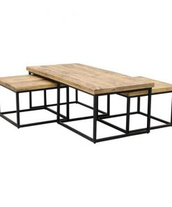 Dewy salontafel industrieel set van 3